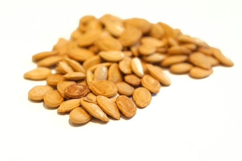 Egyptian Seeds